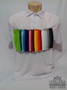 Camiseta Polo 1