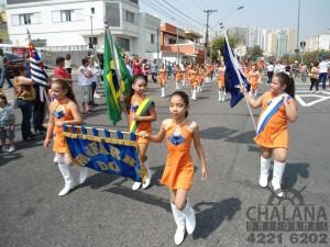 Fanfarra São Caetano do Sul - 117 (Medium)