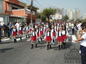 Fanfarra São Caetano do Sul - 94 (Medium)
